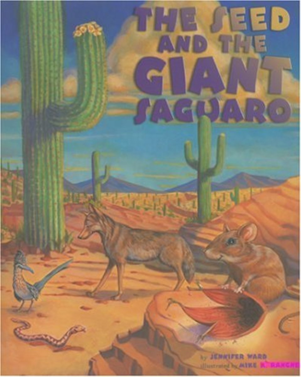 The Seed and The Giant Saguaro