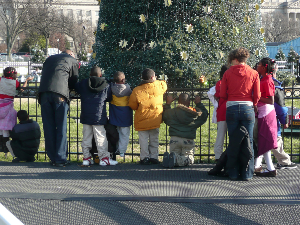 Visitors flock to the National Christmas Tree in 2008.