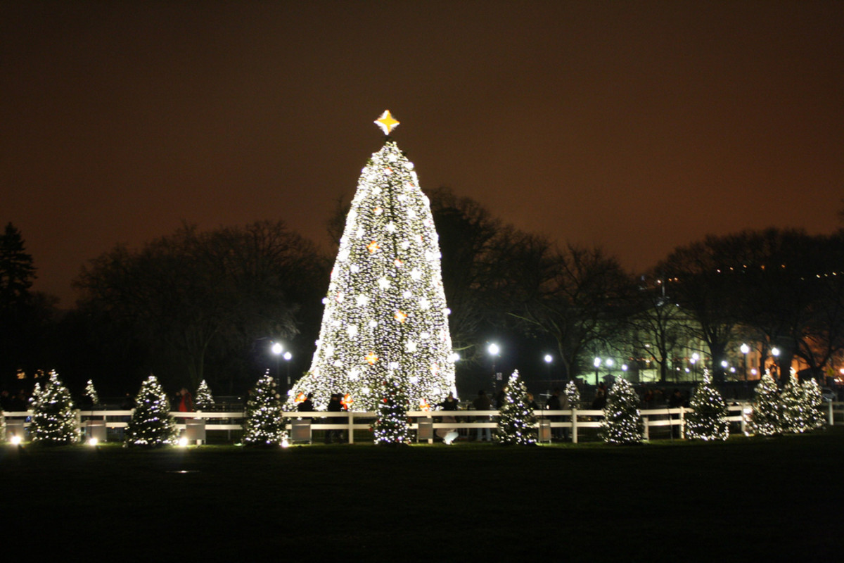 Washington's National Christmas Tree in 2009