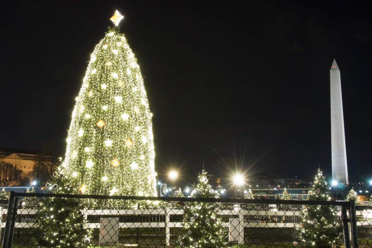 The National Christmas Tree at the White House