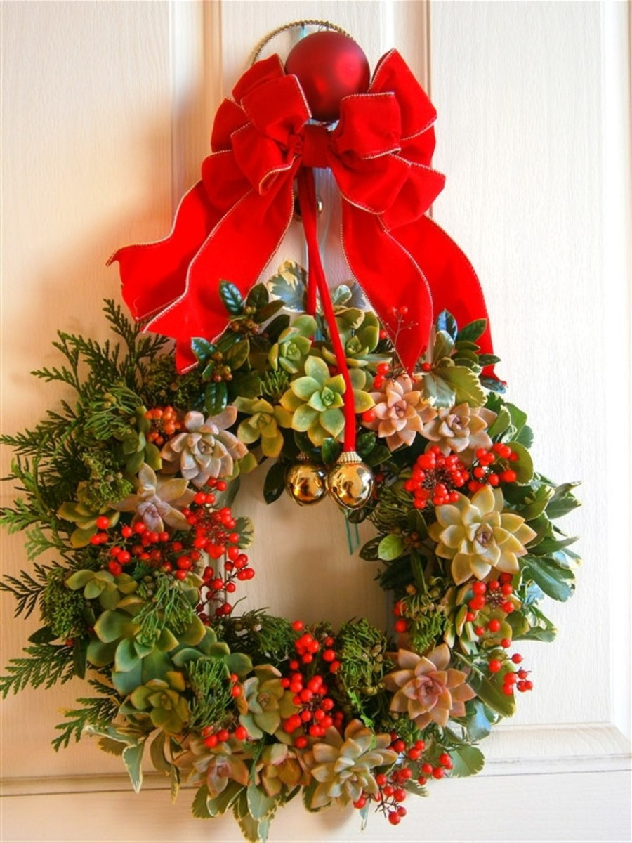 Christmas wreath made up of succulents and red berries--all free. I only paid $3.50 for the circular floral foam.