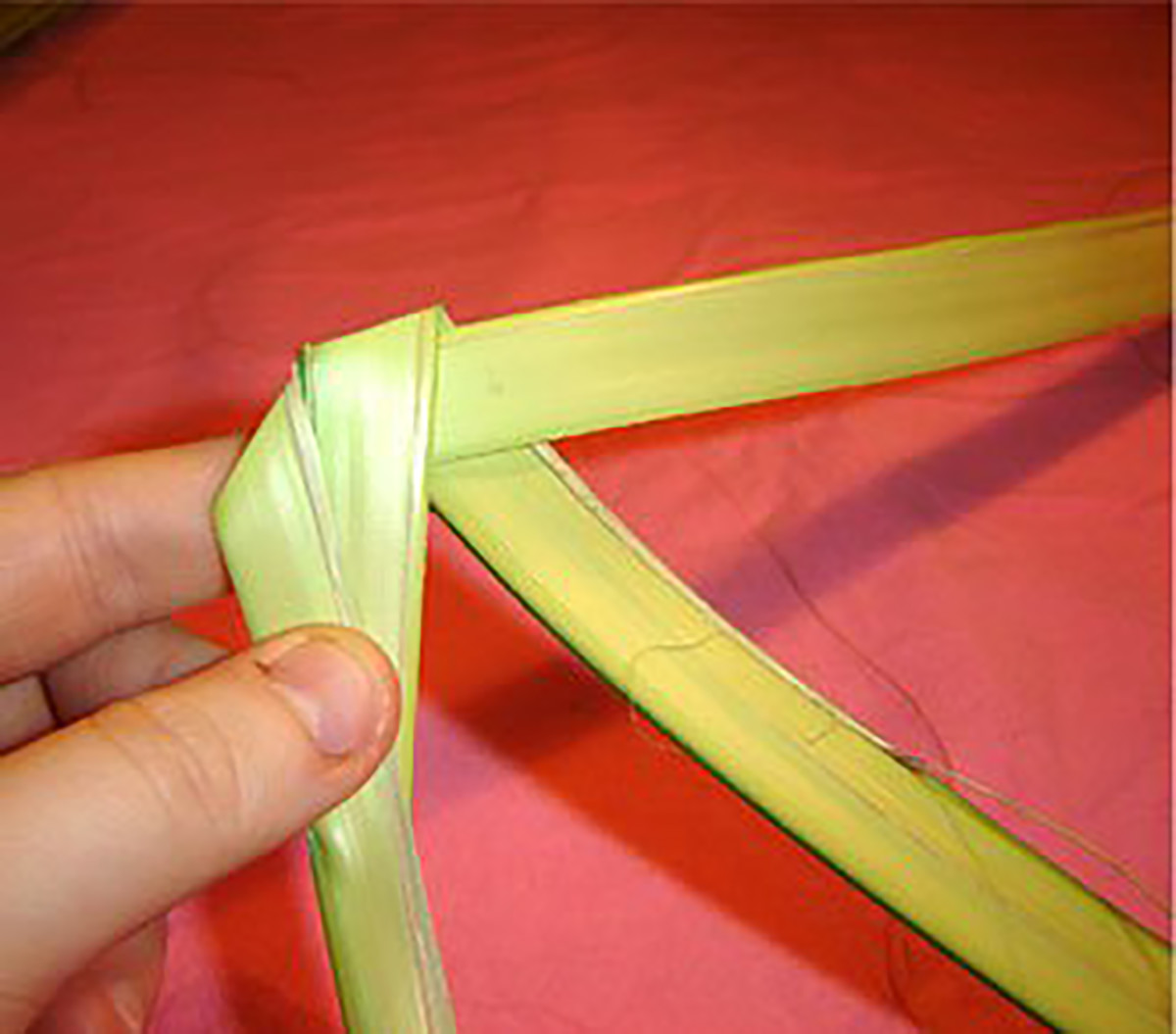 How To Make A Palm Rose For Palm Sunday Holidappy