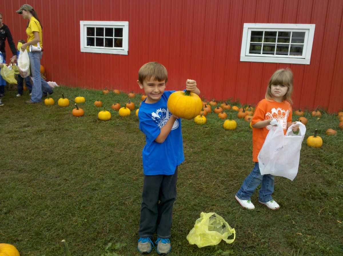 Picking out his pumpkin.