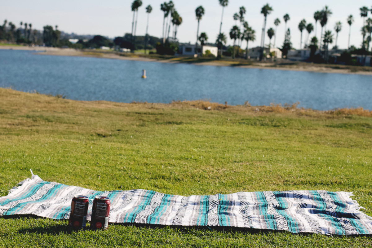 A picnic is a fun, easy, inexpensive gift idea.