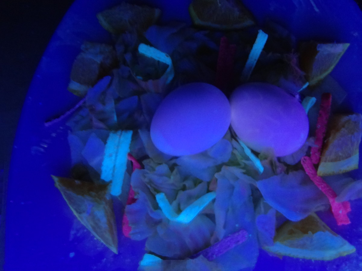 Eggs in the shell will have a red/purple glow.