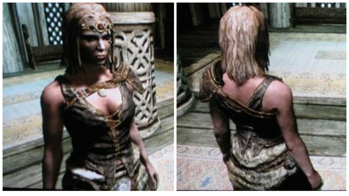 Hide armor, front and back