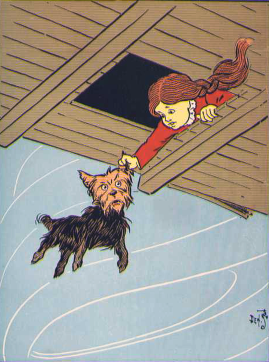 Dorothy rescues Toto. Original illustration from the book.