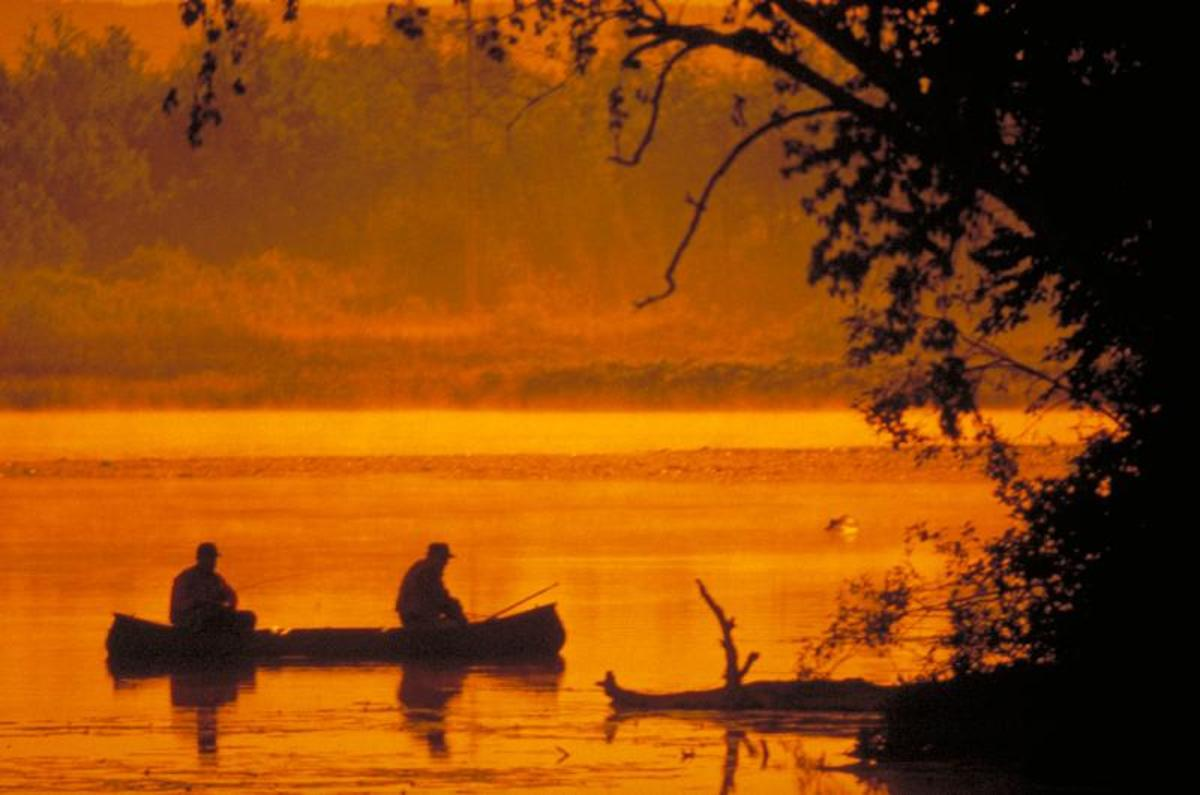 Plan a fishing trip together.
