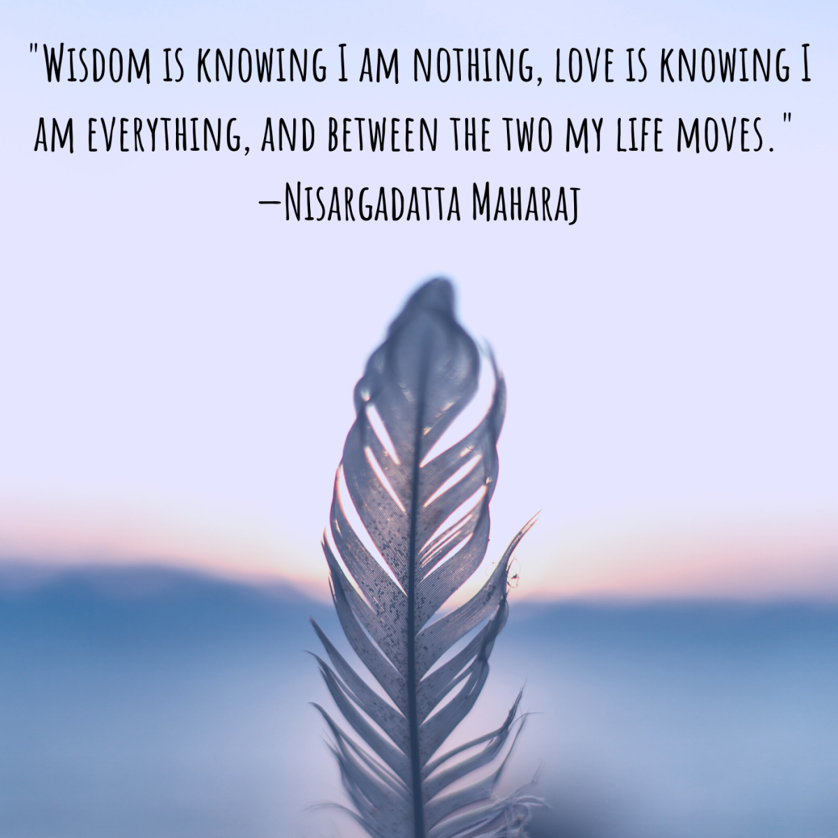 """Wisdom is knowing I am nothing, love is knowing I am everything, and between the two my life moves."" —Nisargadatta Maharaj"