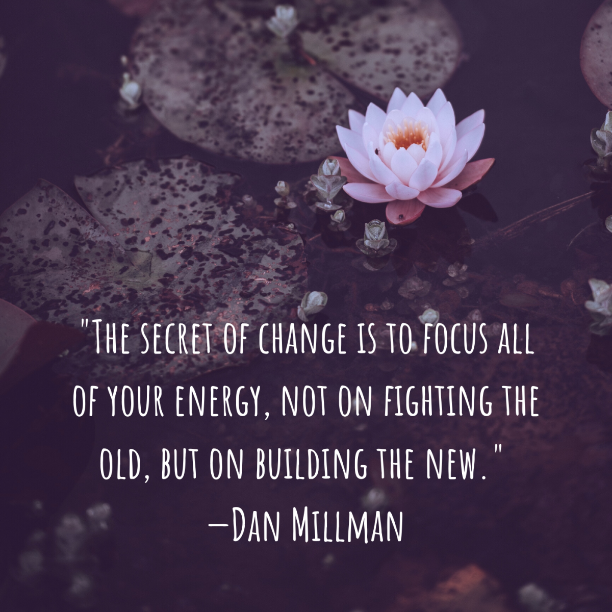 """The secret of change is to focus all of your energy, not on fighting the old, but on building the new."" —Dan Millman"