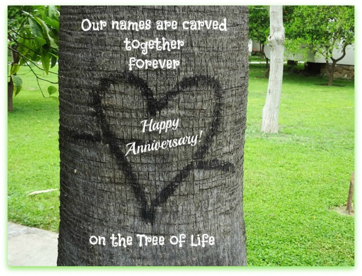 Happy Anniversary Heart Carved on Tree
