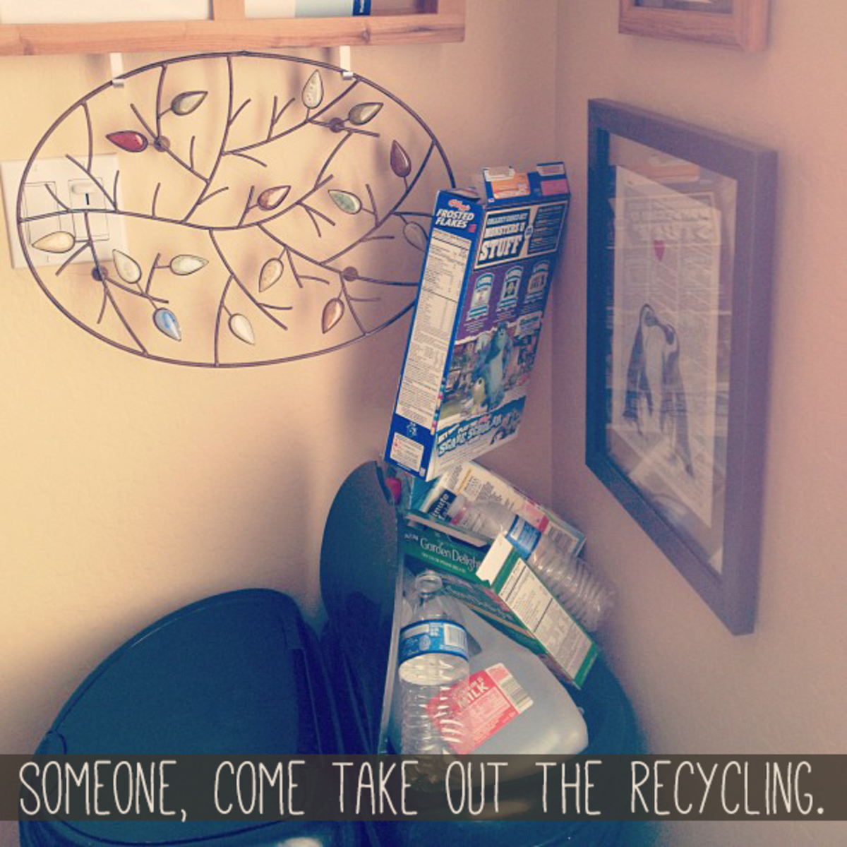 The frame I used usually holds this image of penguins (above the recycling).