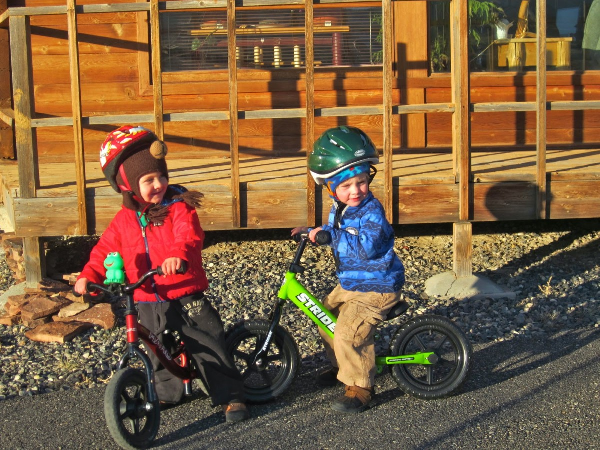 These strider bikes had my kids riding bikes at a young age.