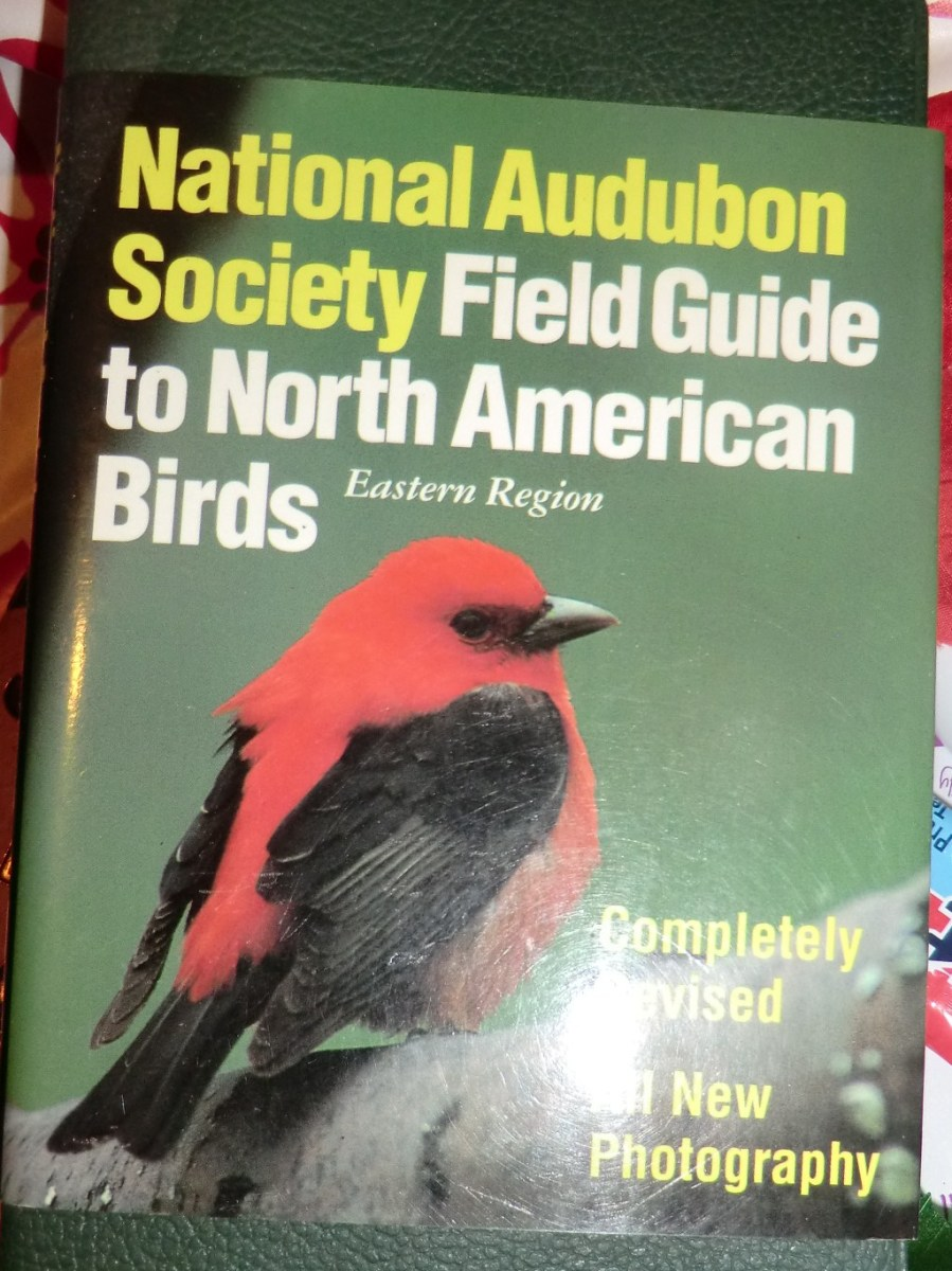 A bird identification book