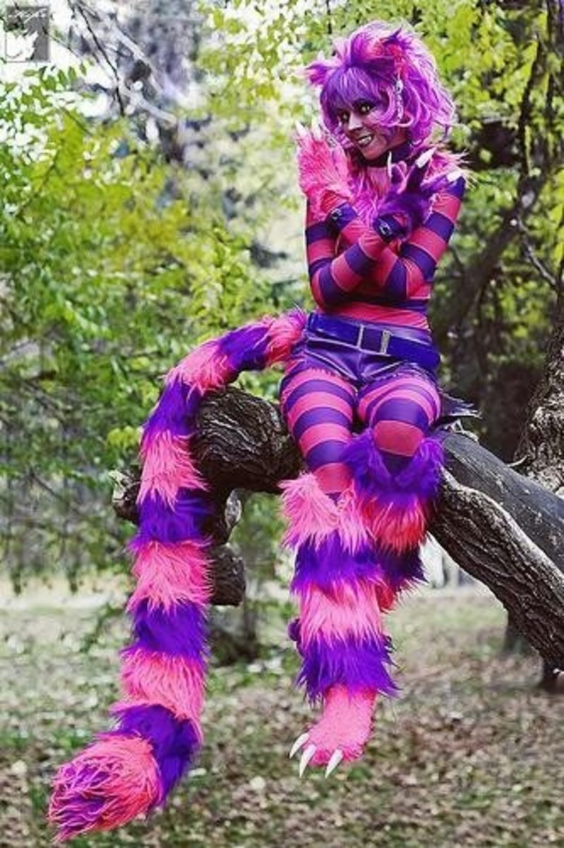 Cheshire Cat | DIY Halloween Costume Ideas