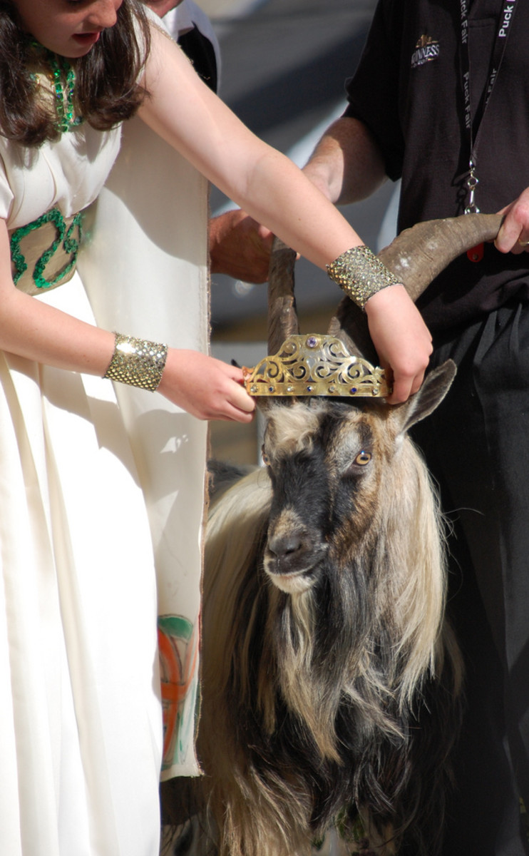 The Crowning of King Puck