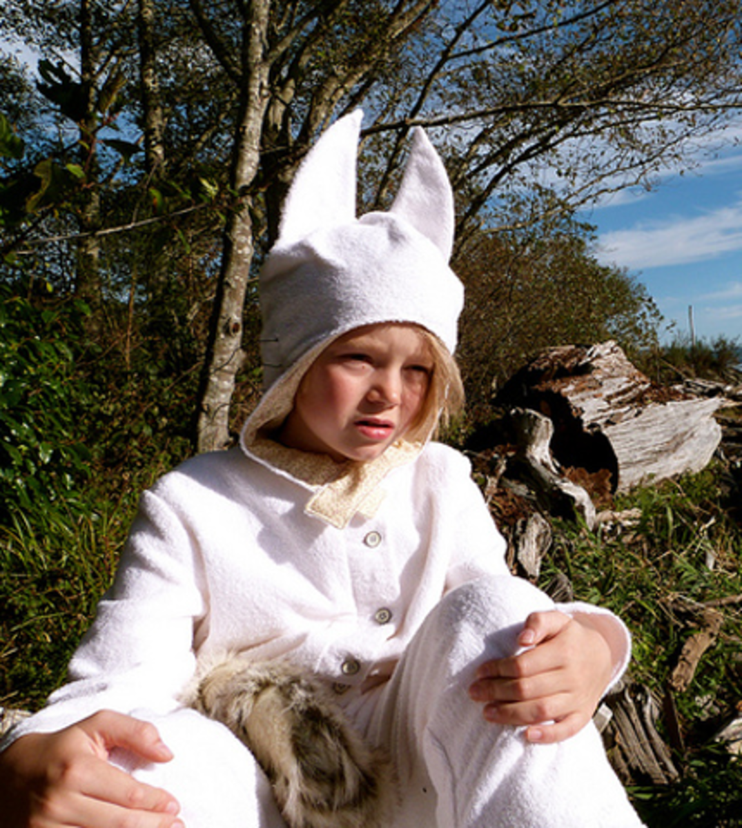 "Max ""Where the Wild Things Are"" Costume"