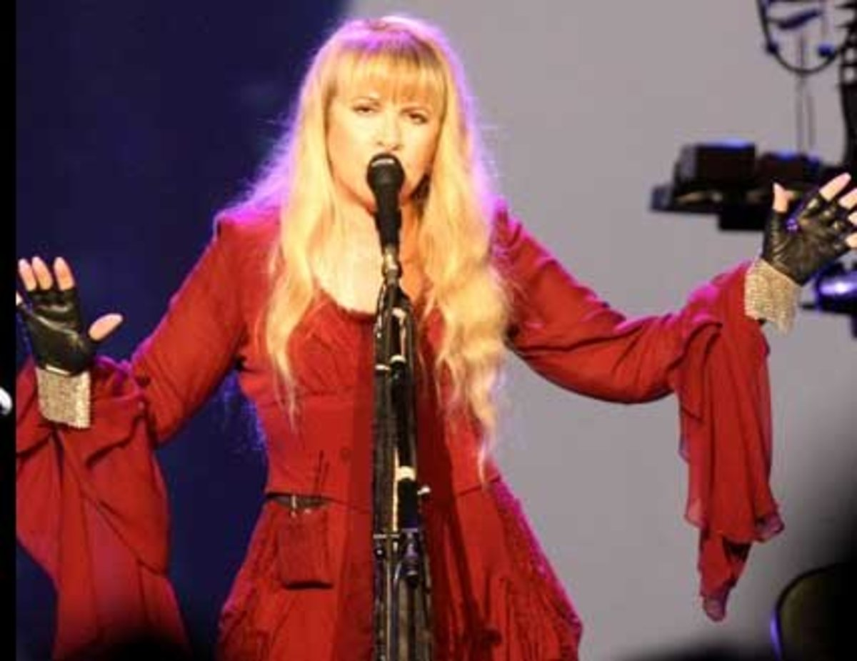 Stevie Nicks Costume
