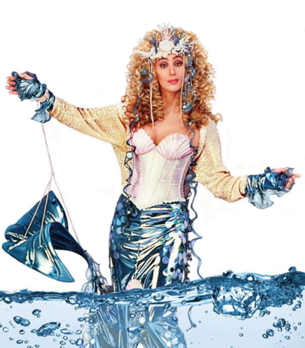 Cher Mermaid Costume