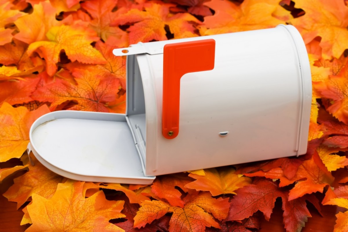 Thanksgiving cards are a welcome change from all the bills and ads most of us are used to finding in our mailboxes.