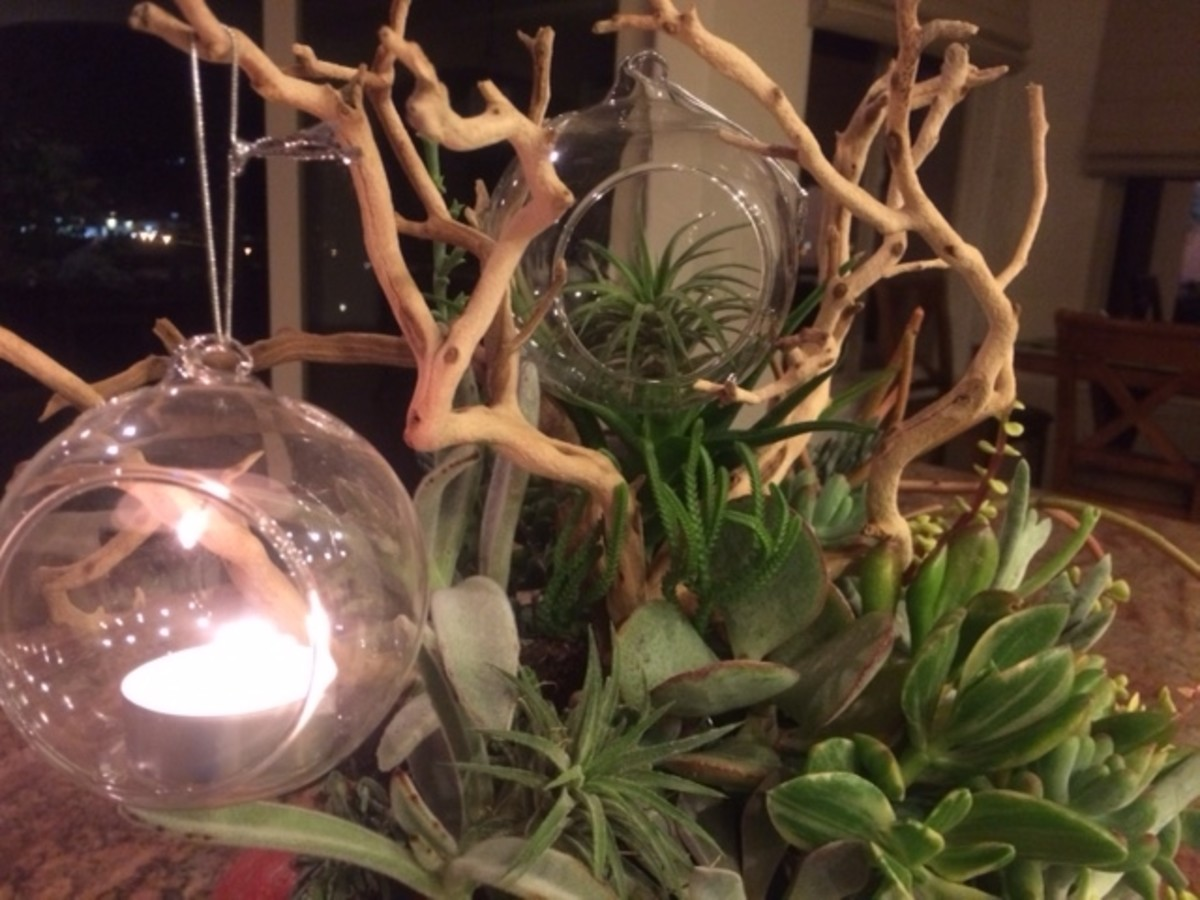 A tealight and an airplant help to make this centerpiece magical for Thanksgiving.