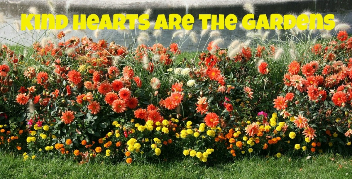 A garden can be a metaphor for kindness.