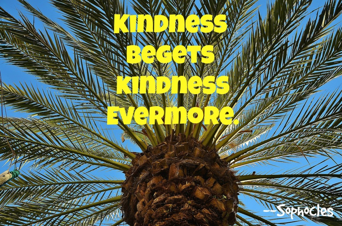 Every kindness brings more kindness.