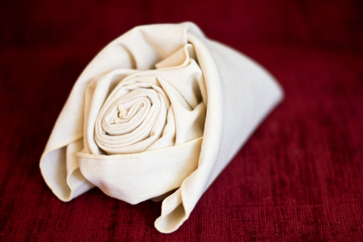 The rose, nestled in the classic fold.