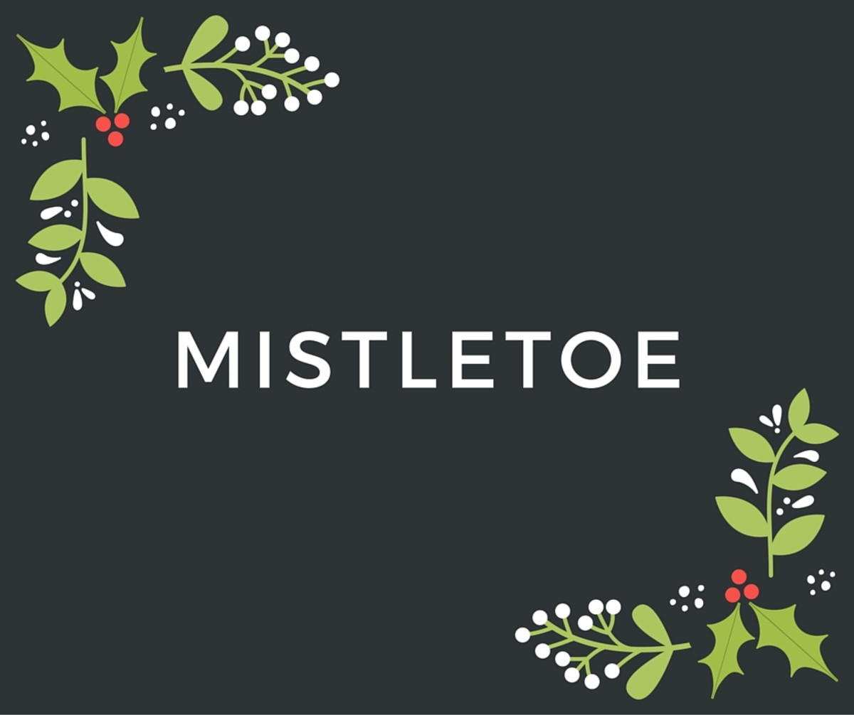 There are so many aspects of the Holiday season that Christmas-themed words are plentiful.