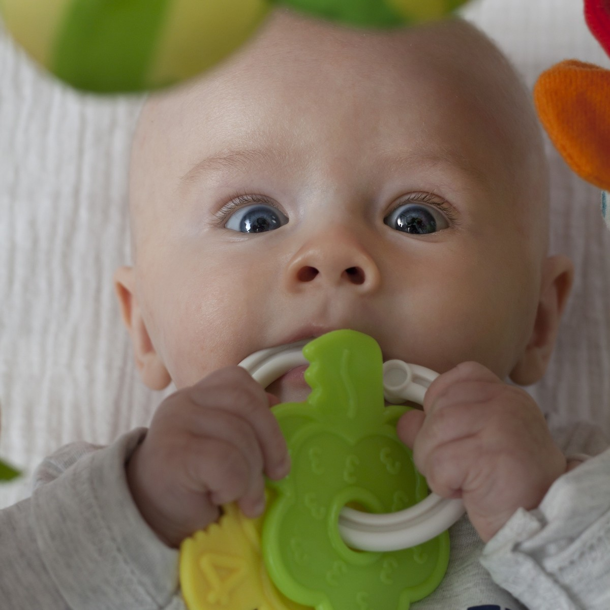 Can you identify a teething ring using only the sense of touch?