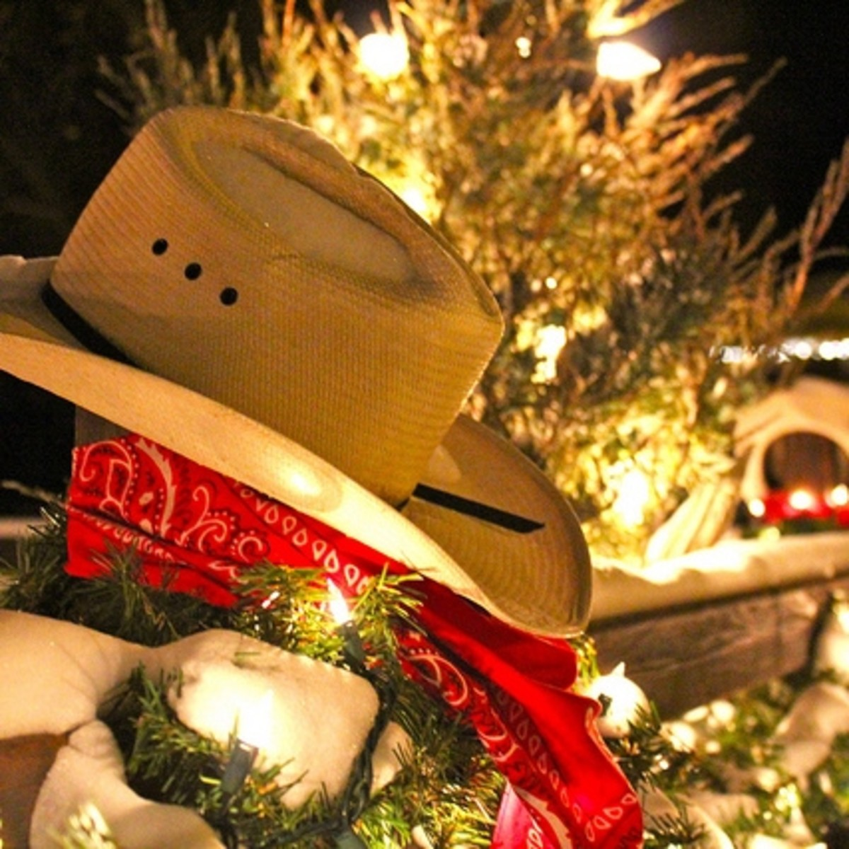 Take a listen to this festive country playlist to get into the holiday spirit.