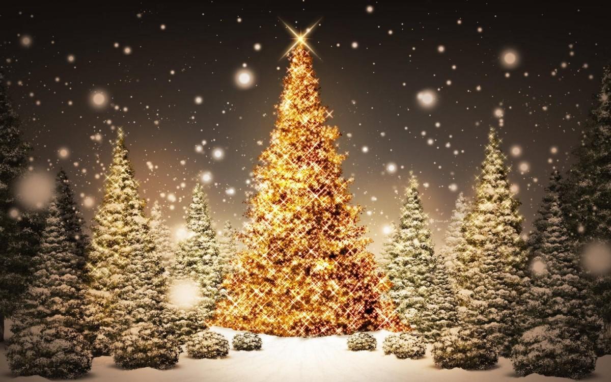 A bright Christmas tree