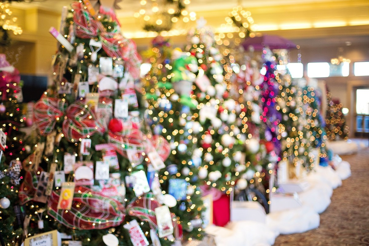 Some charities hold sponsored Christmas Tree showcases where, for a donation, visitors can vote for their favorite tree. You'll get to experience the magic of Christmas trees and give back to your local community at the same time!