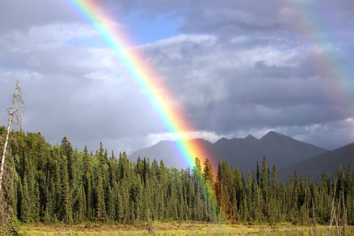 Showers? Flowers? How about a rainbow?  It has to rain for that to happen.