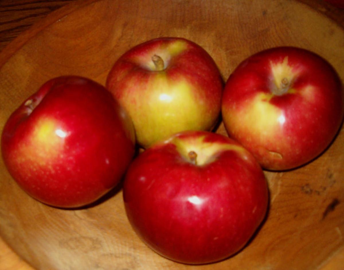 Macintosh Apples: The Original Version!