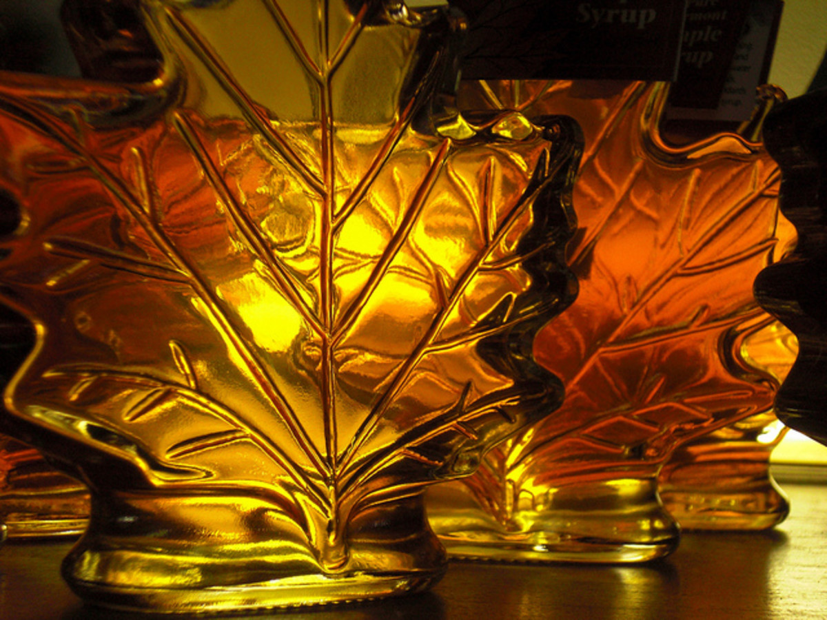Yummy Pure Maple Syrup in Fancy Bottles