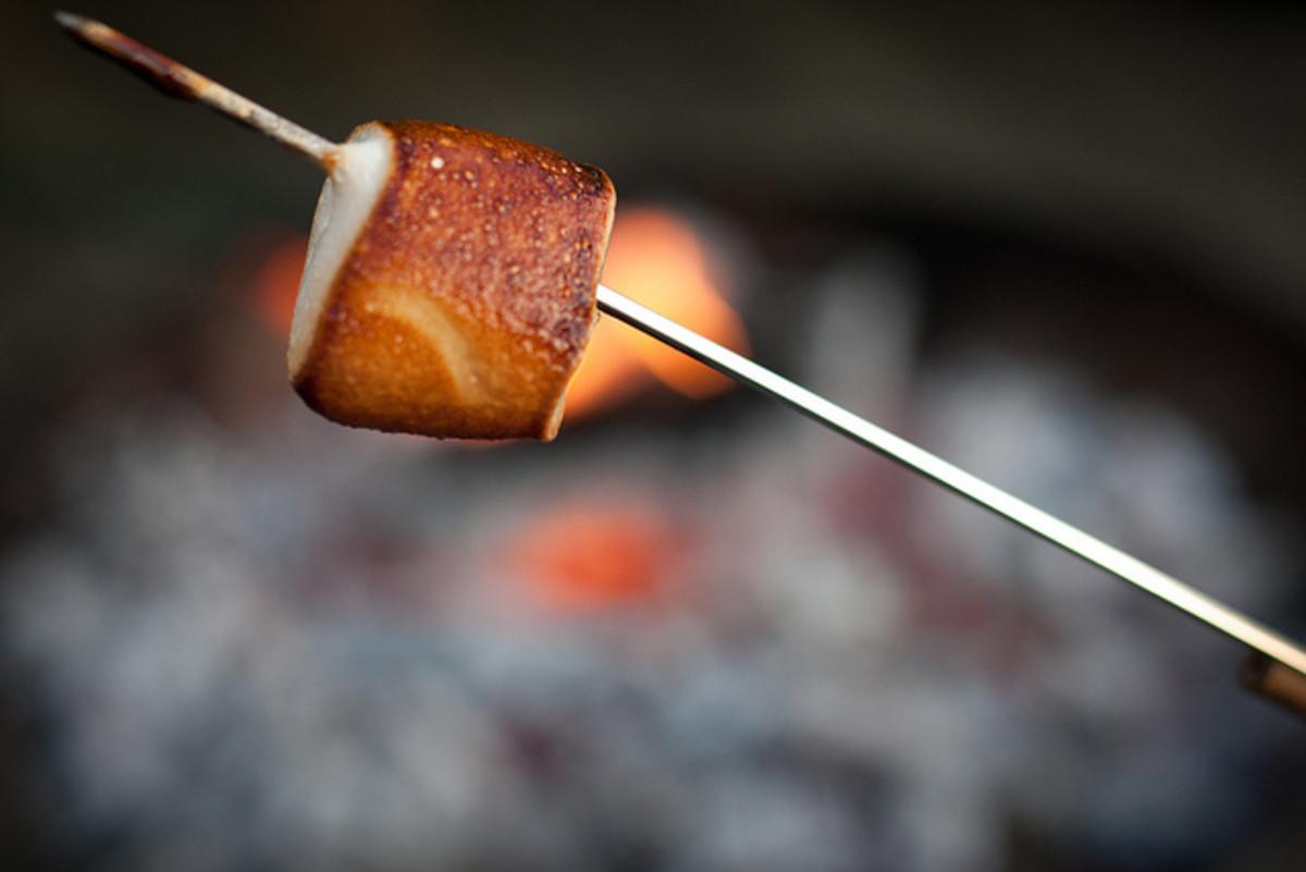 Toasted Marshmallows!  Yum!