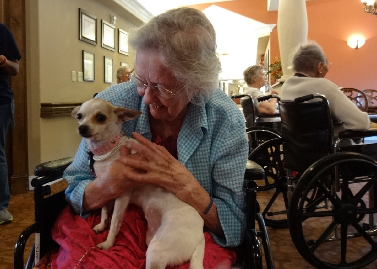 Here, Louise connects with a visiting dog that accompanied the home-schooled children when they sang to residents.