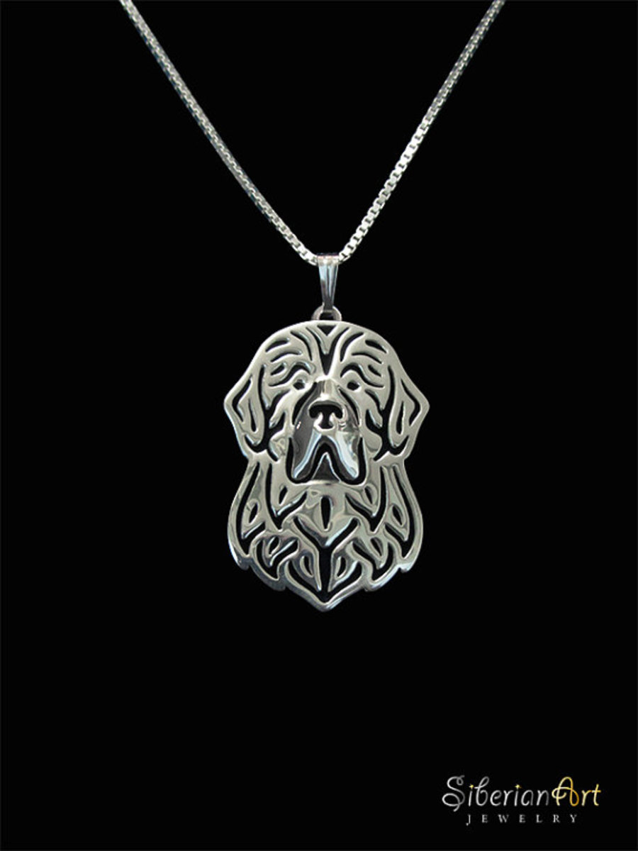 Newfoundland Silver Chain and Pendant