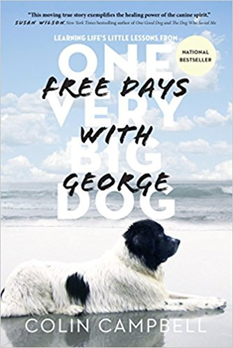 Free Days with George: One Very Big Dog