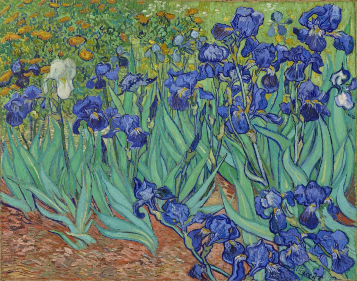 Vincent van Gogh (Dutch, 1853 - 1890) Irises, 1889, Oil on canvas - The J. Paul Getty Museum, Los Angeles