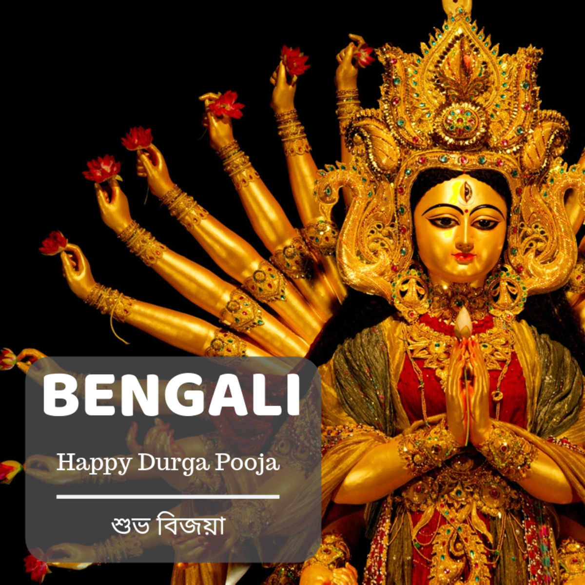 Happy Durga Pooja—শুভ বিজয়া