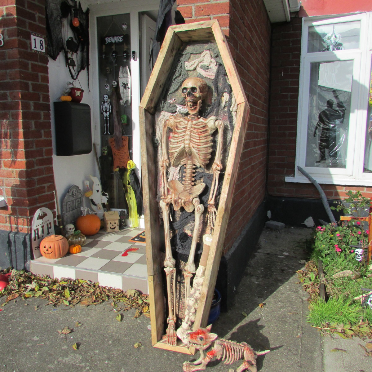 This is my skeleton, Percy, displayed in my handmade coffin decoration.