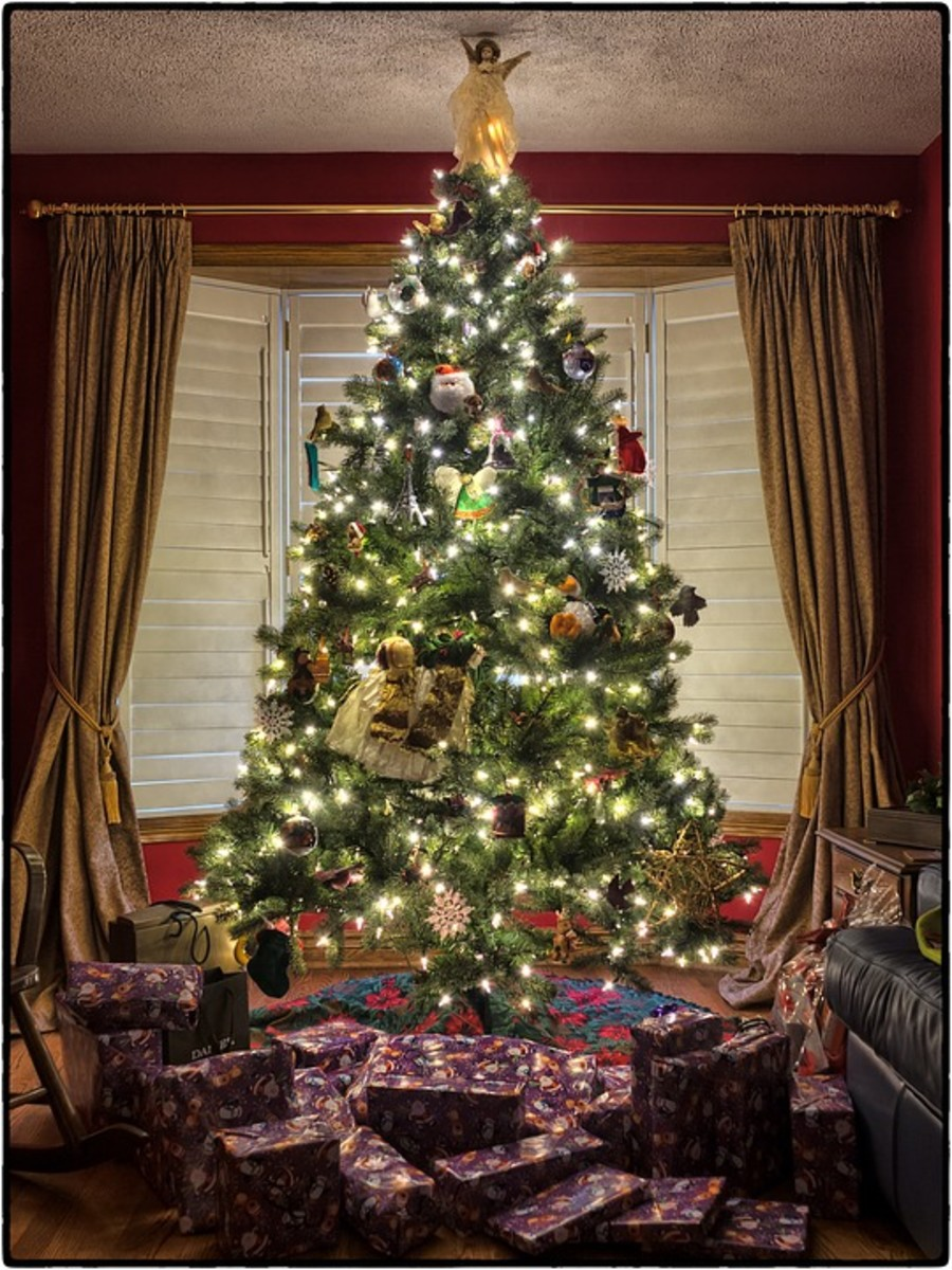 Place your living Christmas tree in a cool room or by a cool wiindow