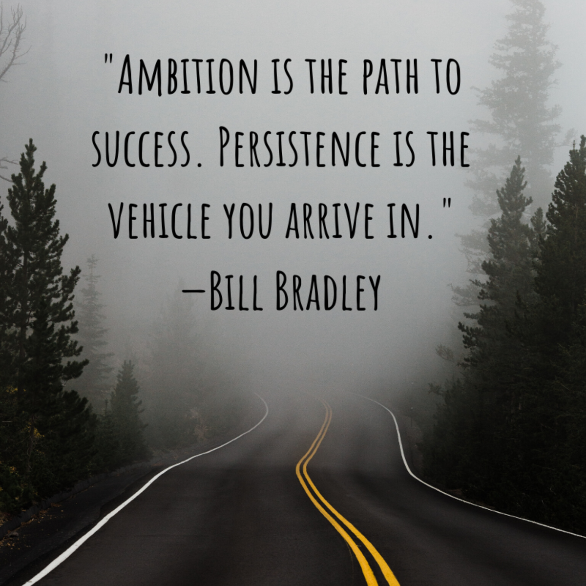 """Ambition is the path to success. Persistence is the vehicle you arrive in."" —Bill Bradley"