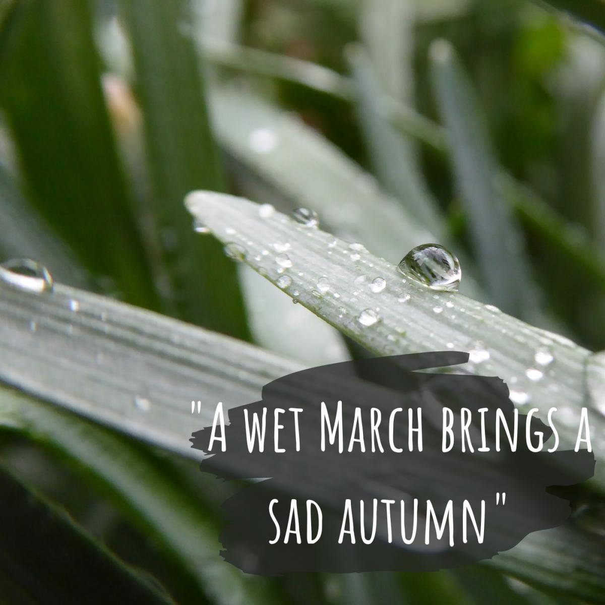 A wet March brings a sad autumn.