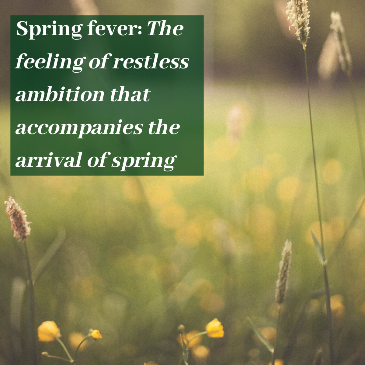 Spring fever: The feeling of restless ambition that accompanies the arrival of spring