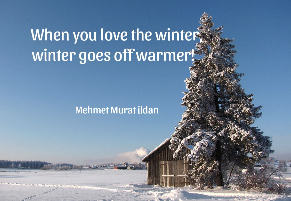 Nature's splendor is never more evident than on a bright and chilly winter's dawn.