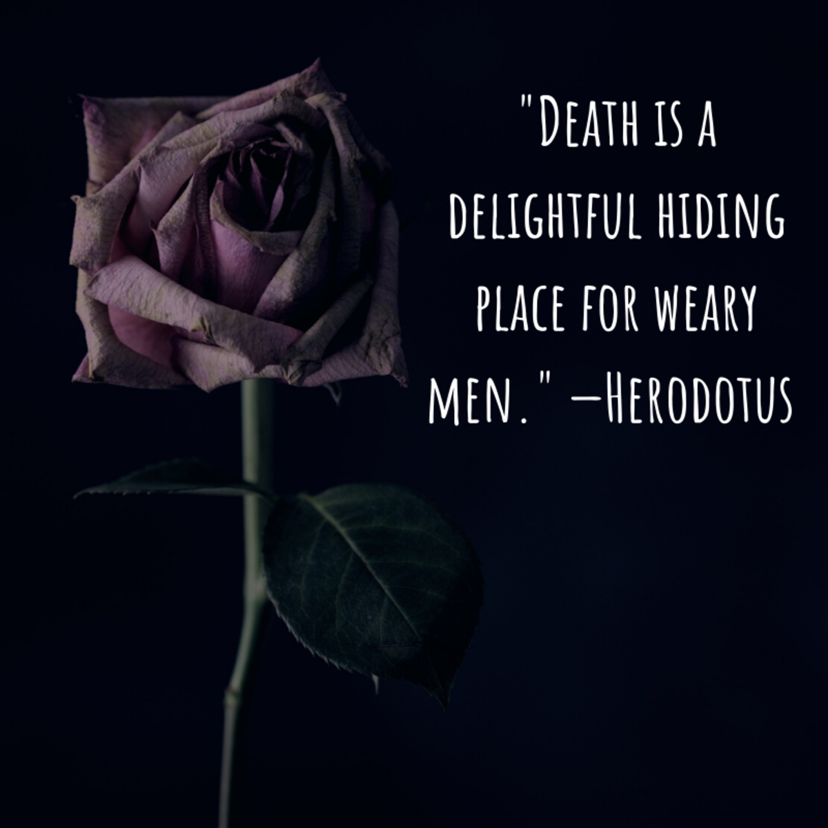 """Death is a delightful hiding place for weary men."" —Herodotus (historian)"