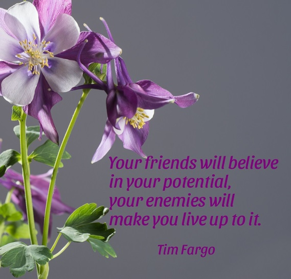"""Your friends will believe in your potential, your enemies will make you live up to it."" —Tim Fargo"